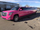 2015, Cadillac, SUV Stretch Limo, Pinnacle Limousine Manufacturing