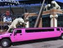 Used 2007 Hummer H2 SUV Stretch Limo VIP Coachworks - Lenox, Michigan - $29,900