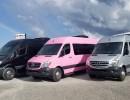 New 2016 Mercedes-Benz Sprinter Van Limo  - Alva, Florida - $68,900