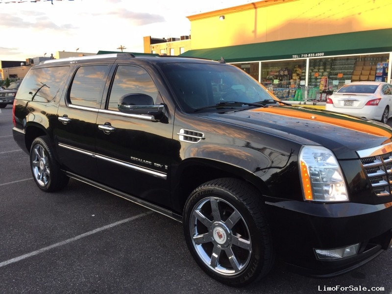 used 2008 cadillac escalade esv suv limo brooklyn new york 32 750 limo for sale. Black Bedroom Furniture Sets. Home Design Ideas