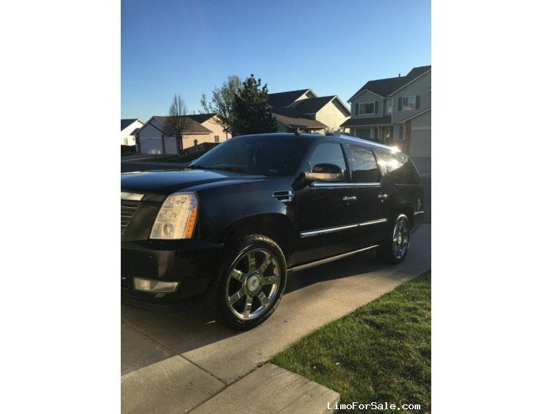 Used 2008 Cadillac Escalade ESV SUV Limo  - Denver, Colorado - $12,599